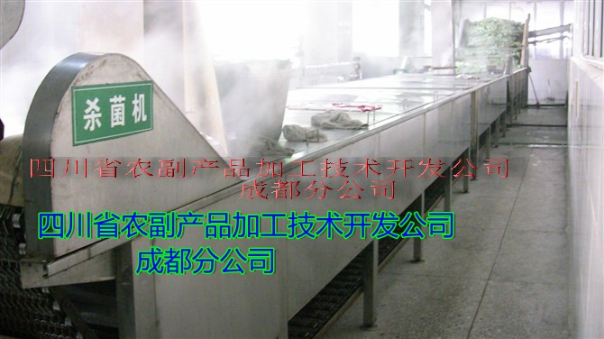 【蕨菜加工设备】调味蕨菜生产线,风味蕨菜生产线21511102