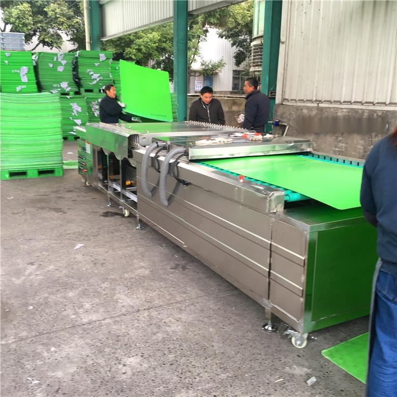 塑料隔板清洗机,PP板清洗机,PVC板清洗机894004495