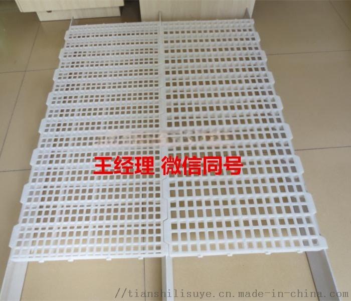 多规格鸡用漏粪板 优质鸡用漏粪板 种鸡舍用路粪板835636002