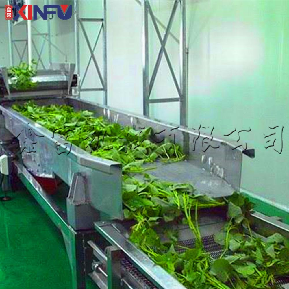 鑫富供应,菠菜清洗机,水果清洗机,气泡清洗机810600692