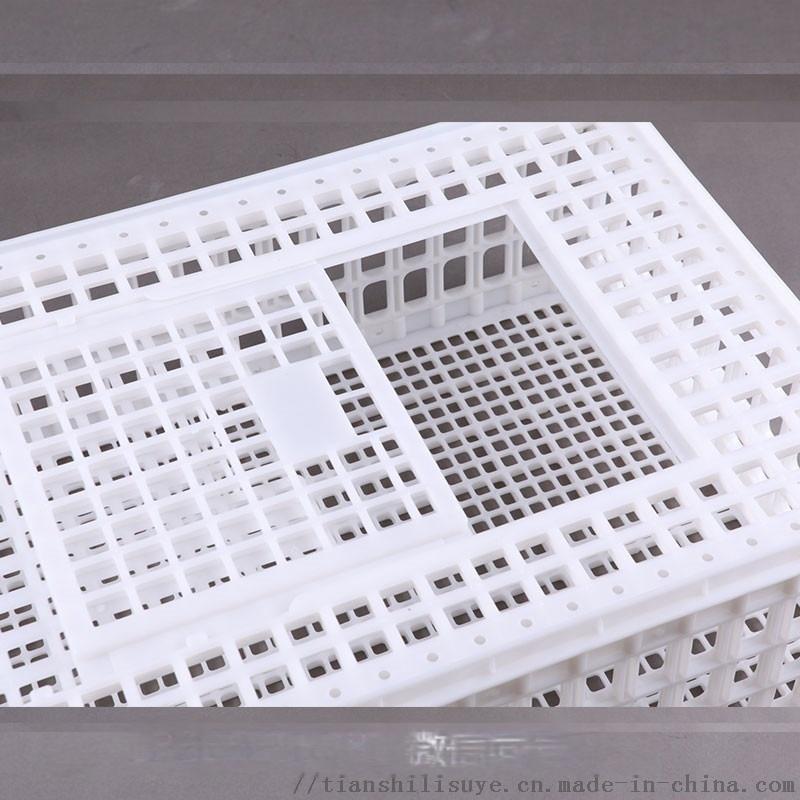 鸡鸭兔运输笼子 拉鸡塑料笼子 大鸡塑料笼子896923395