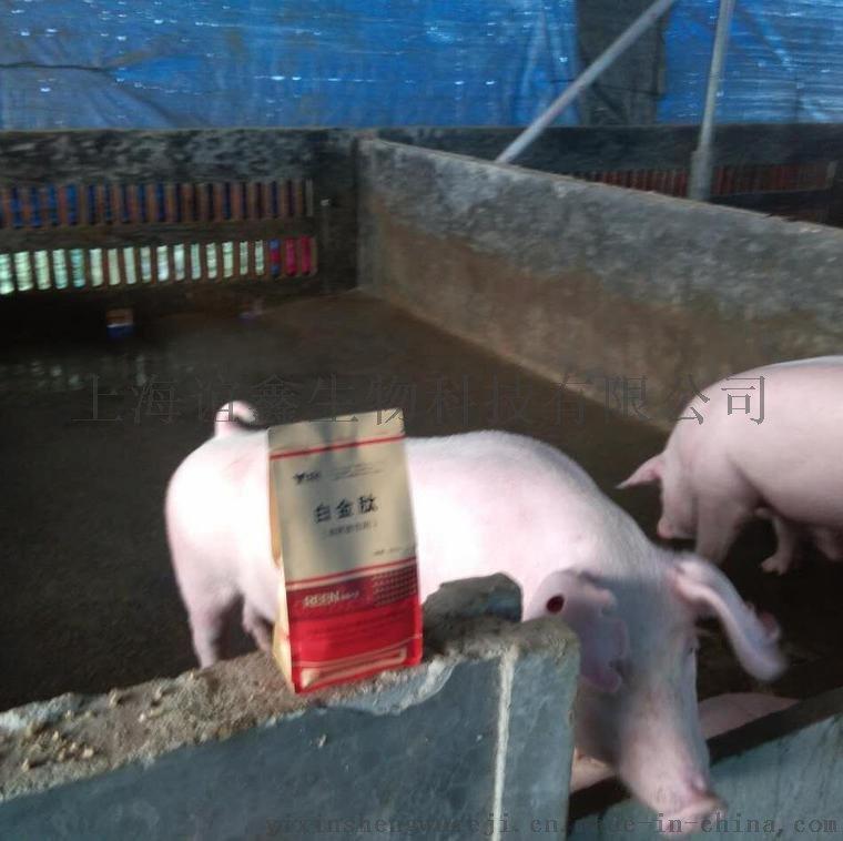 猪腹泻拉稀如何治僵猪怎么调理740275262