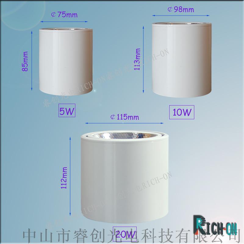 白色筒燈-2 (2)