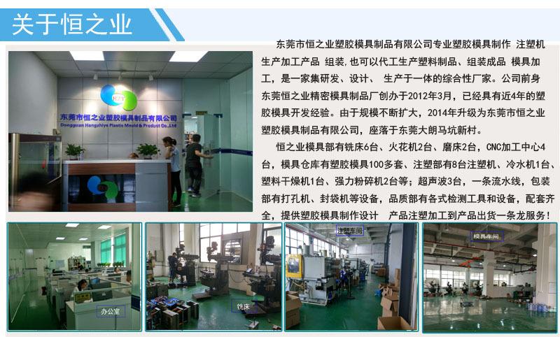 恒之业塑胶模具制品 (1).jpg