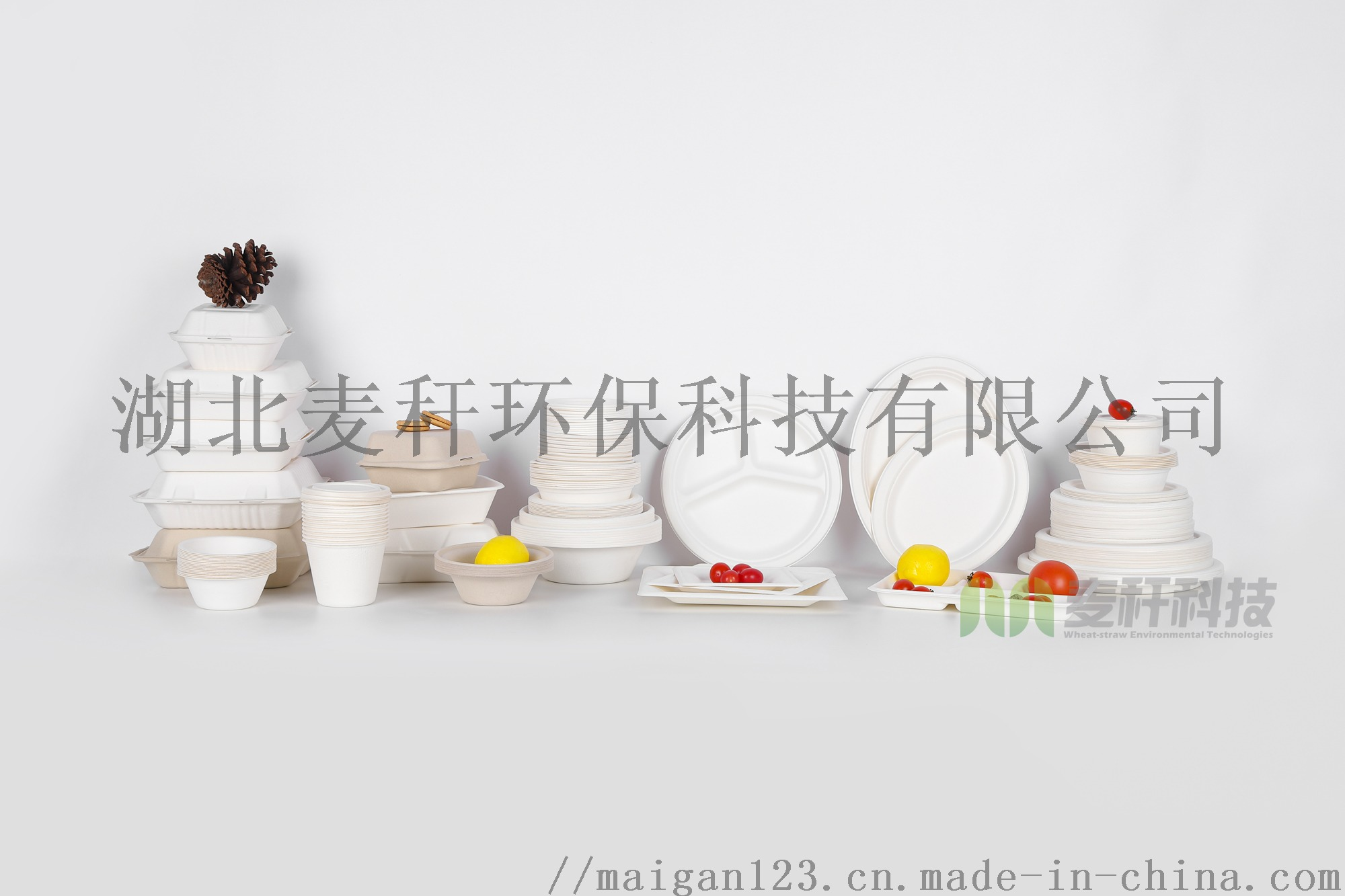 環保可降解一次性食具,工廠直髮,9寸圓盤831047722