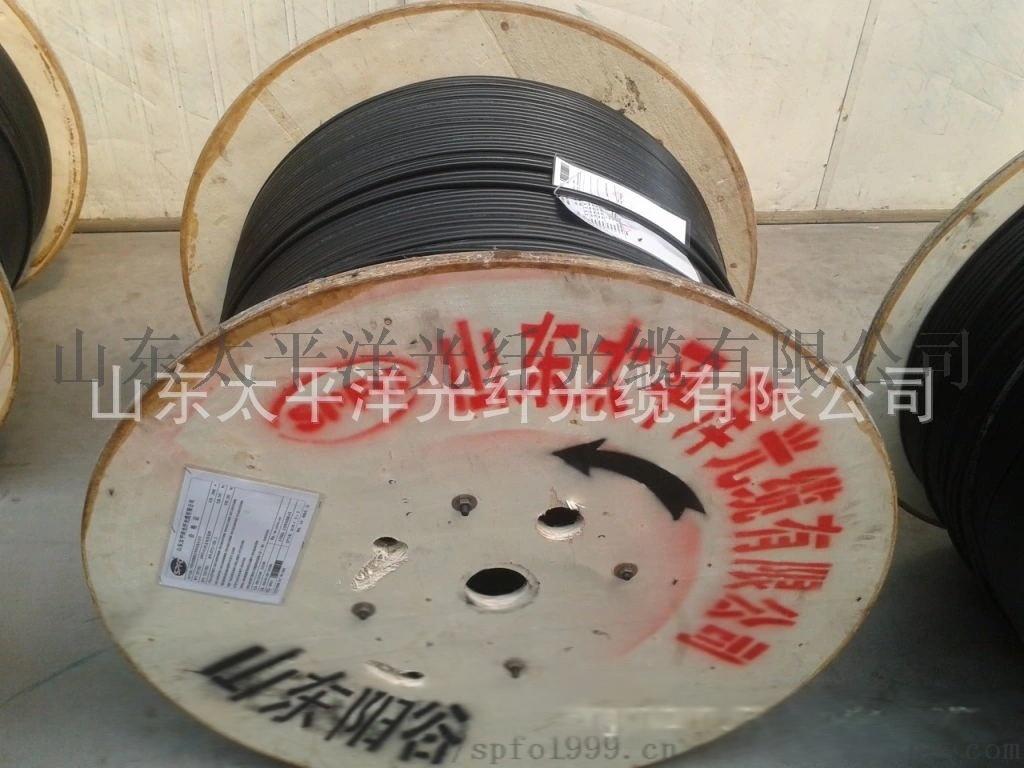 太平洋 GYFTY-6B1 6芯 室外非金属光缆817071562
