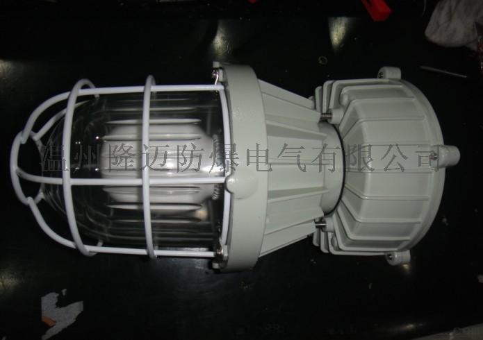 TWD610-30G吊式防爆LED灯52742025
