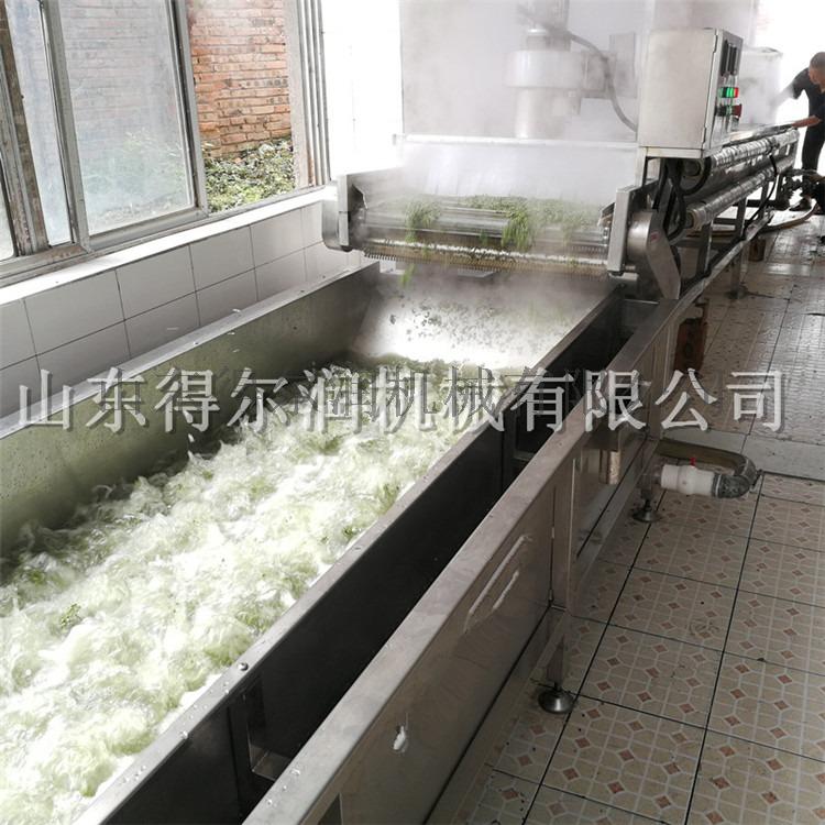 四川 D鲜花椒生产线 花椒杀青机 花椒杀青漂烫设备765150222