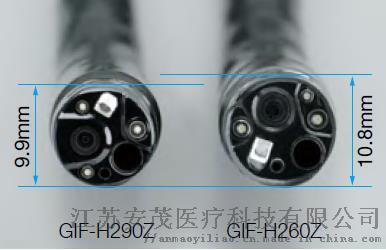 H290Z-2.jpg
