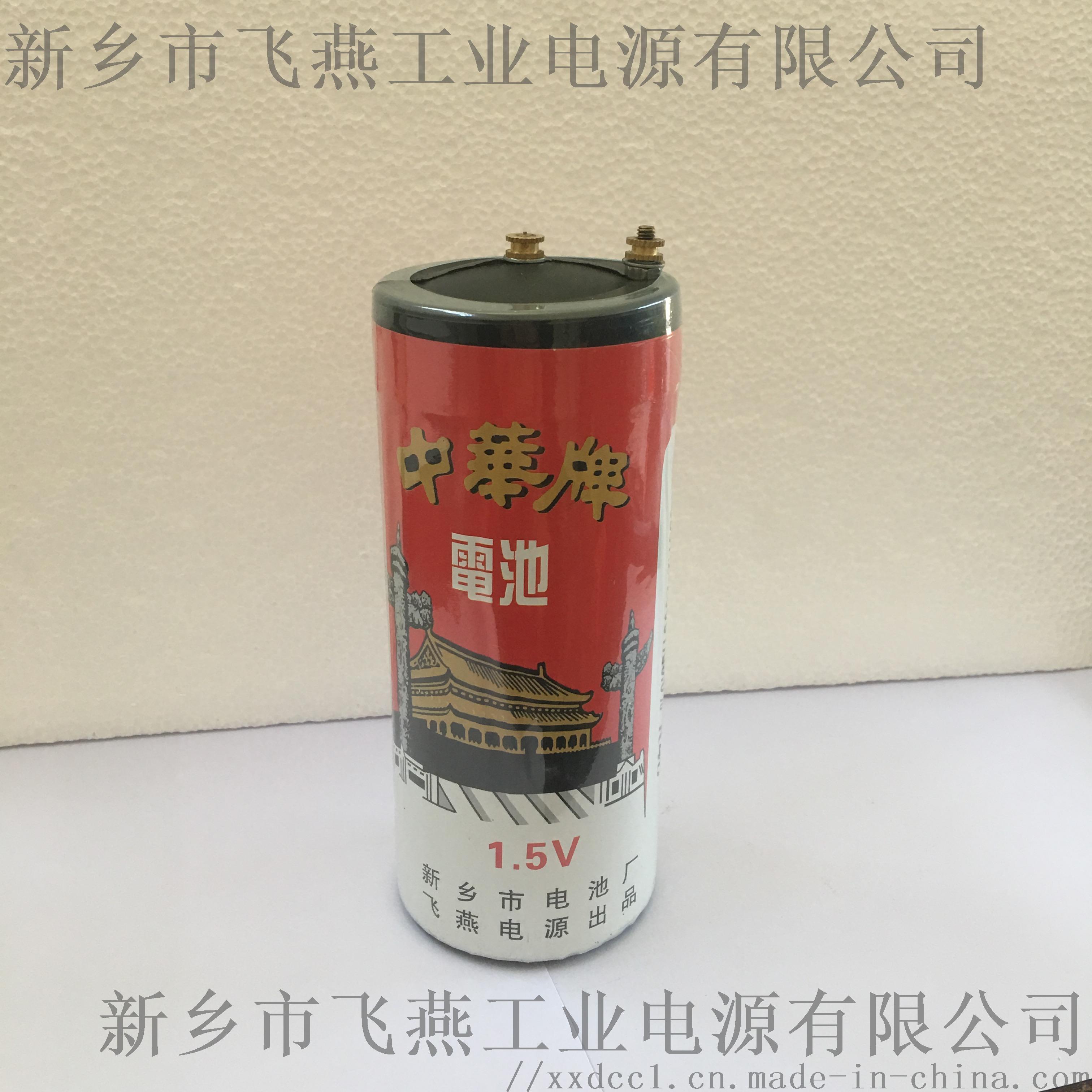 甲电池3.JPG