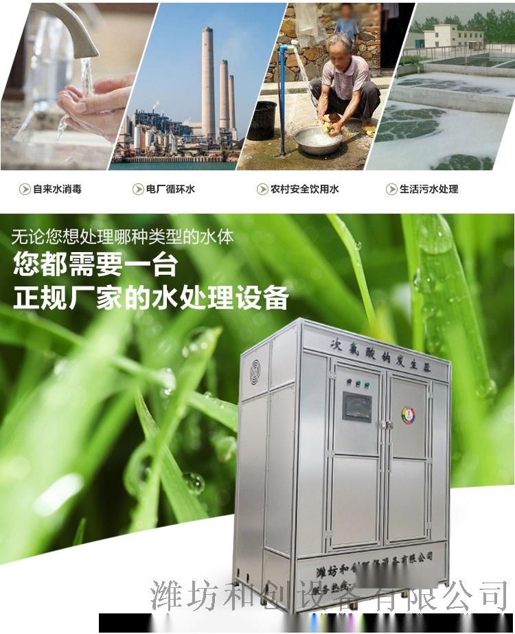 水廠次氯酸鈉發生器/甘肅水廠消毒設備80160255