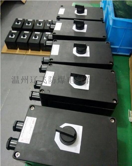 BZZ8050-32防爆防腐轉換開關765900722