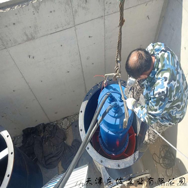 轴流泵 天津两型潜水电泵,可供农田排灌之用823764632