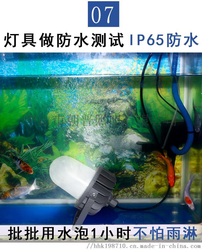 详情_10.jpg