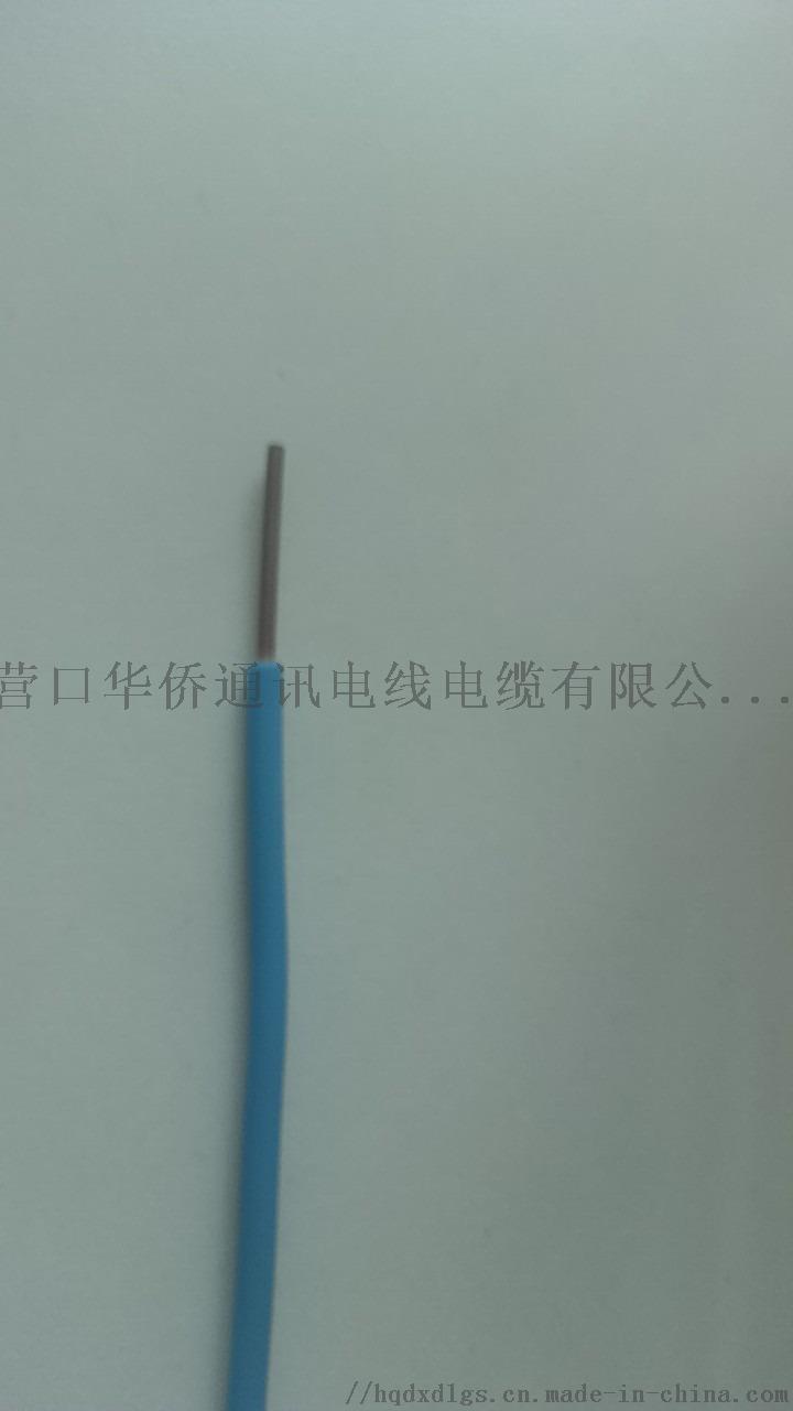 華僑BV2.5.jpg