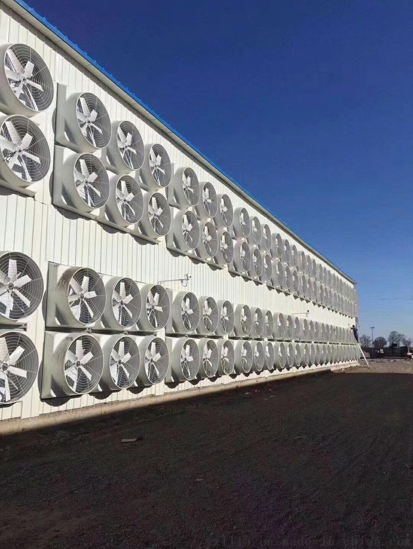 厂房通排风技术-负压排风机132842772