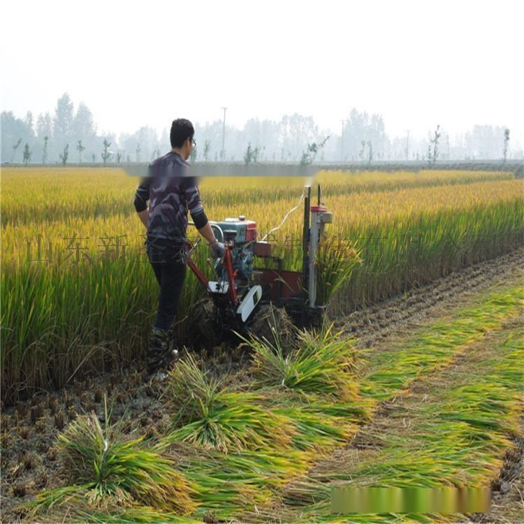 割捆機-水稻.jpg