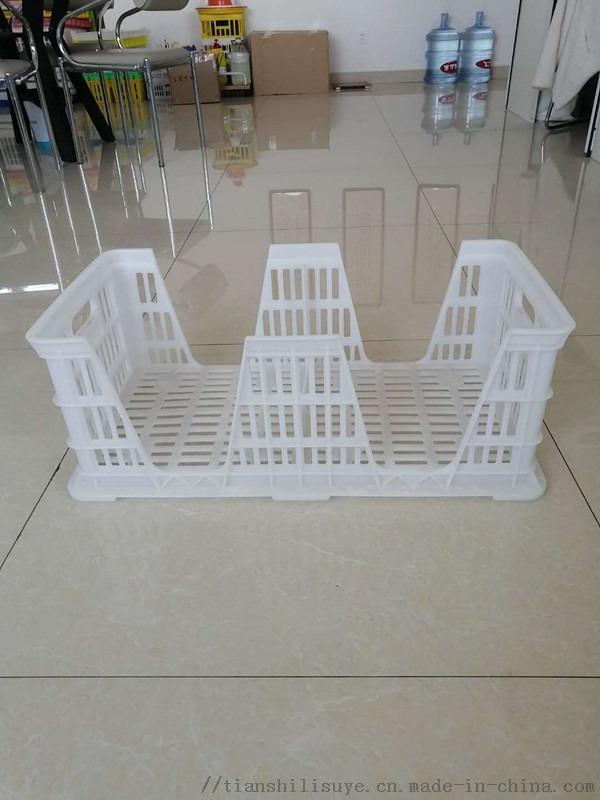 新式塑料种蛋筐 塑料隔板蛋筐 运输用塑料种蛋筐122612472