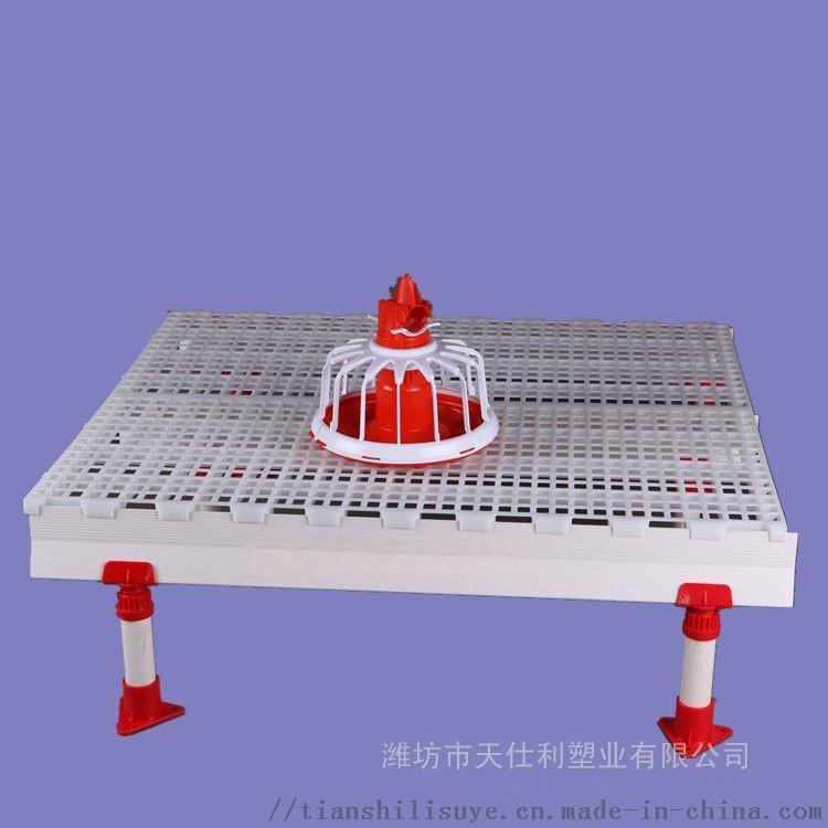 鸡舍漏粪板 塑料漏粪板 养鸡场漏粪板134490335