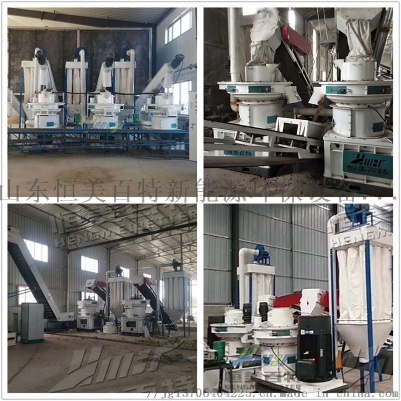 生物質顆粒機可再生的能源設備平模製粒機設備廠家71809802