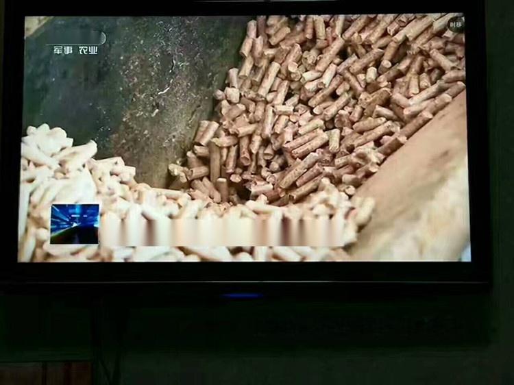 家用颗粒采暖炉 智能真火颗粒燃烧炉 环保无烟 价格105725582