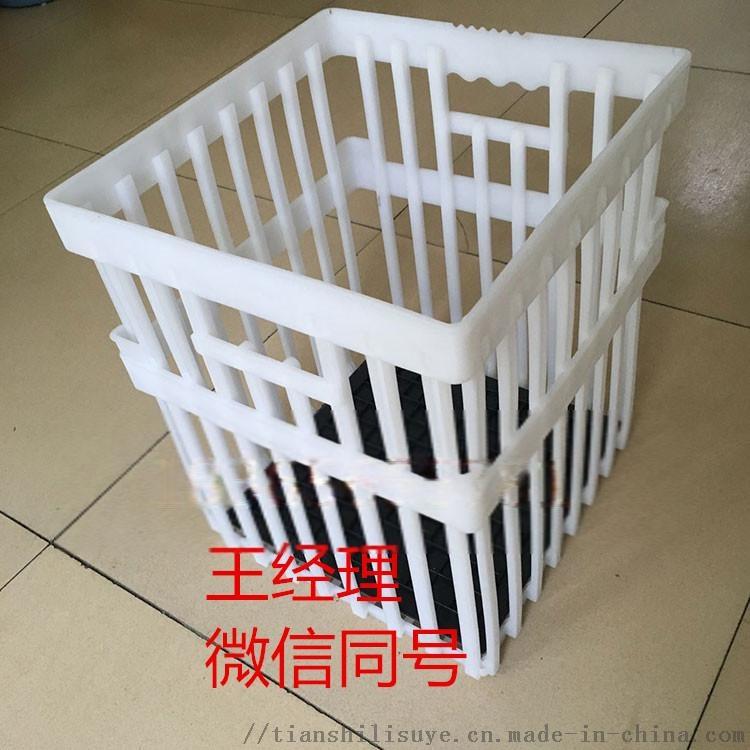 种蛋周转箱 塑料鸭种蛋箱 厂家供应种蛋周转箱898010735