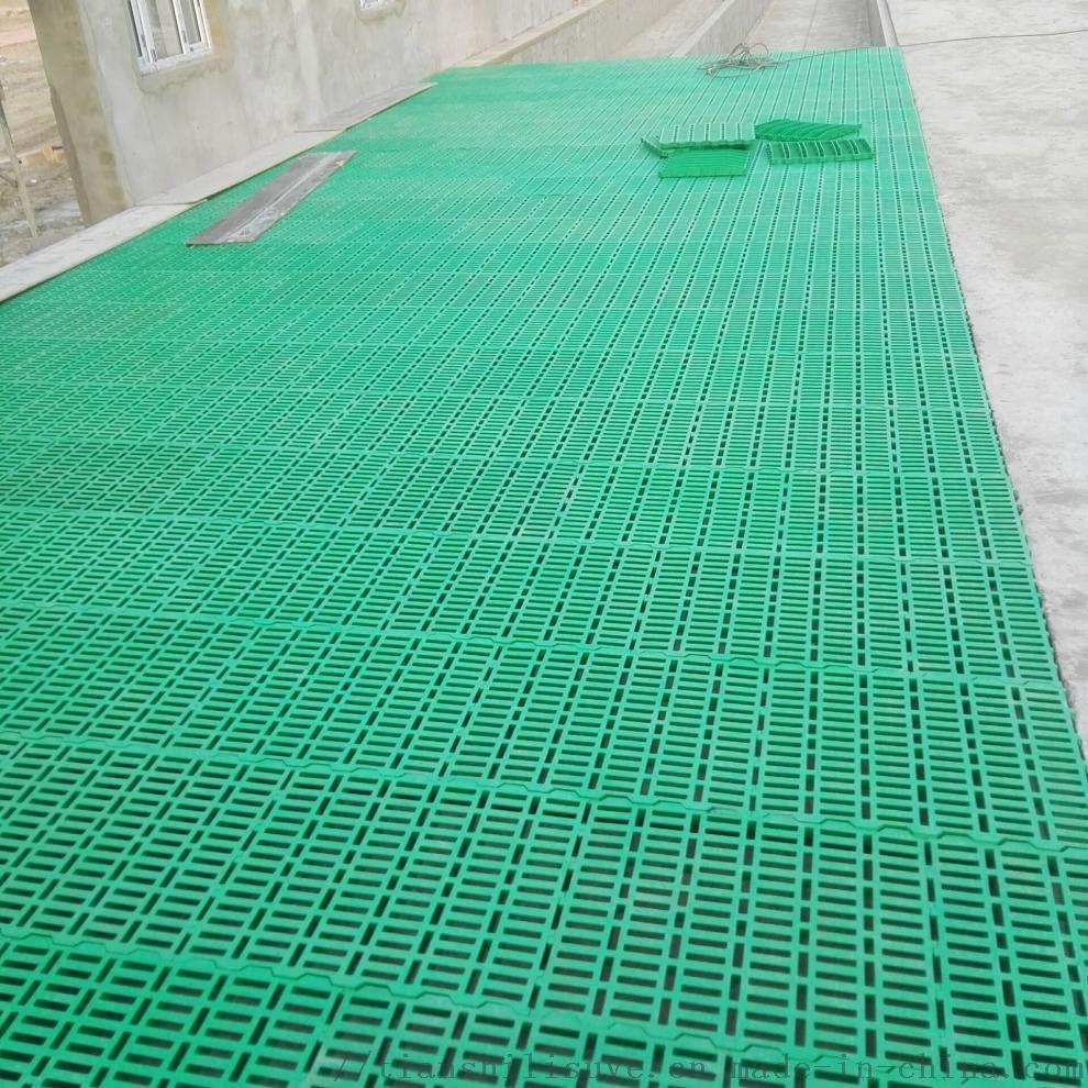 山羊漏粪板厂家 山羊塑料漏粪板 供应羊用漏粪板121046812