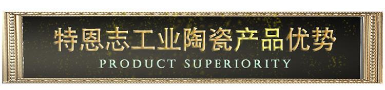 20特恩志工业陶瓷产品优势-标题.jpg