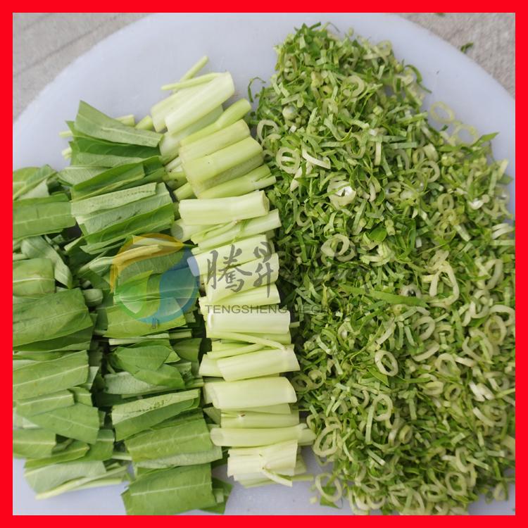 净菜加工适用 变频蔬菜切菜切丝机79096395