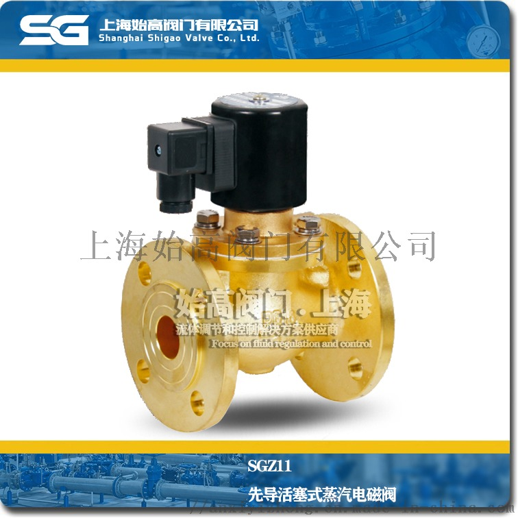 SGZ11先导活塞式蒸汽电磁阀1.jpg