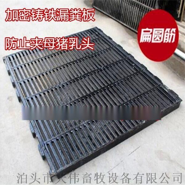 现代养殖猪用漏粪板,加厚小猪育肥地板767714665