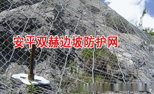 主动边坡防护网¥ 落石防护网 ¥钢丝绳网厂家697288652