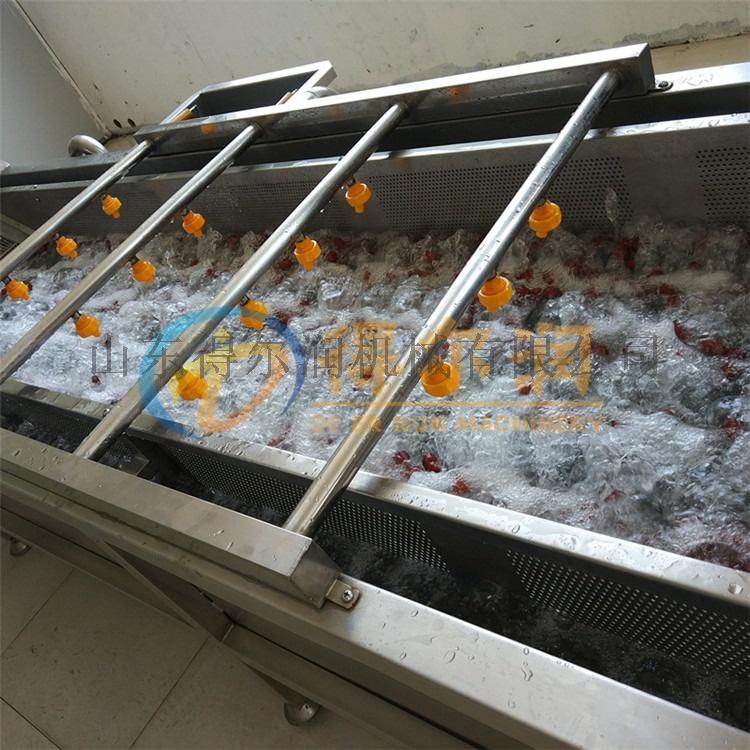 韭菜全自动清洗机 菠菜气泡清洗机 水果蔬菜清洗机65133012