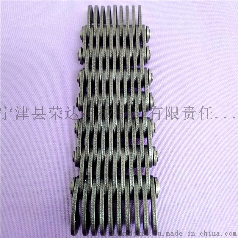 CL10内导19片齿形链条2.jpg