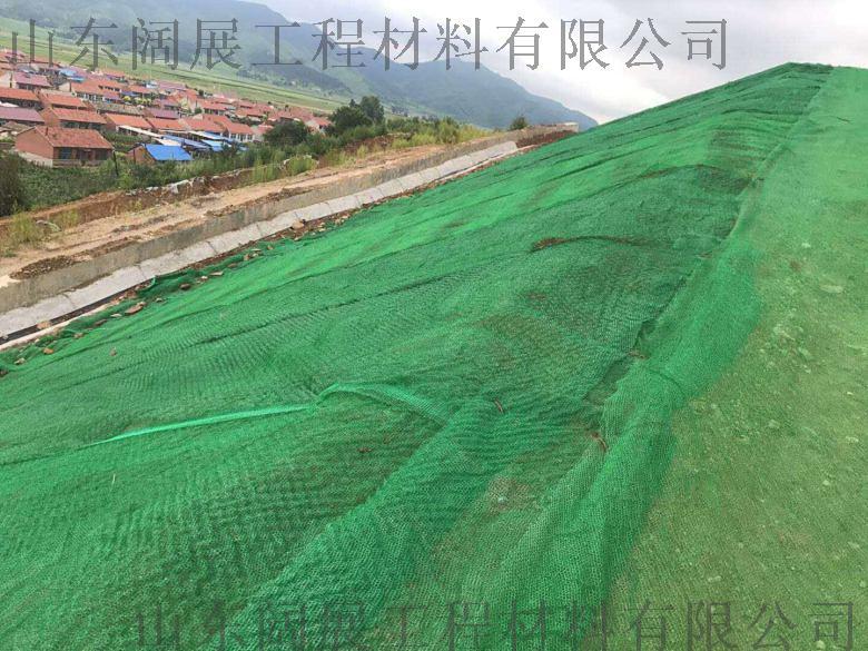 土工网垫 三维植草网 护坡绿化植草网772600252