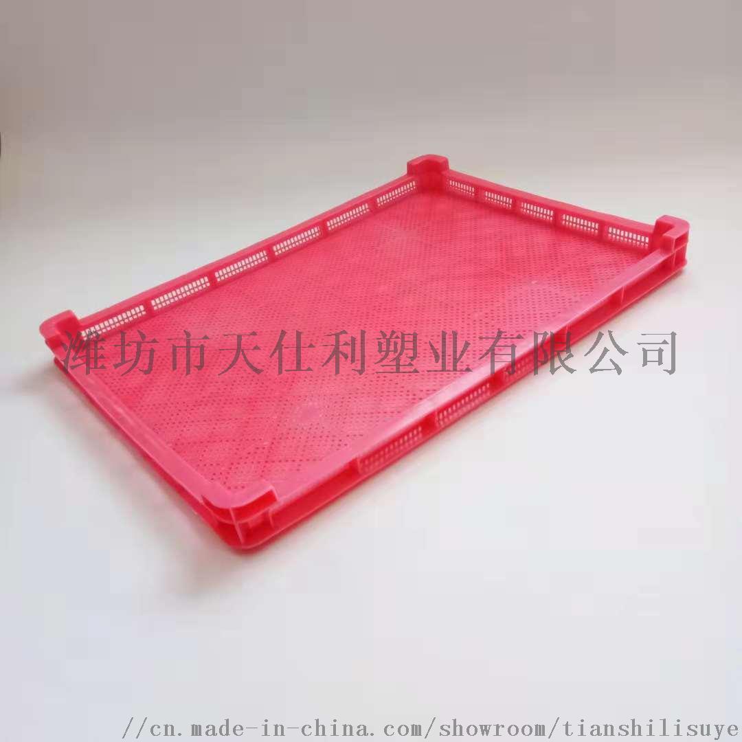 供应塑料单冻盘速冻盘烘干盘846531925