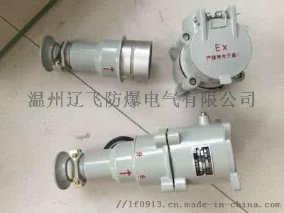 BCD-16A防爆插銷裝置770302332