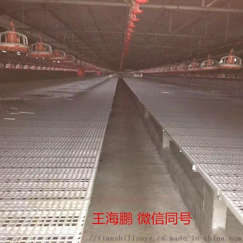 鸡舍用漏粪地板 鸭用漏粪地板厂家 防滑漏粪地板134108415