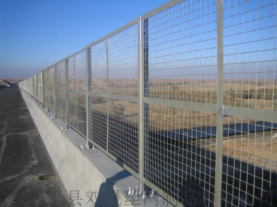 桥梁防抛网1.jpg