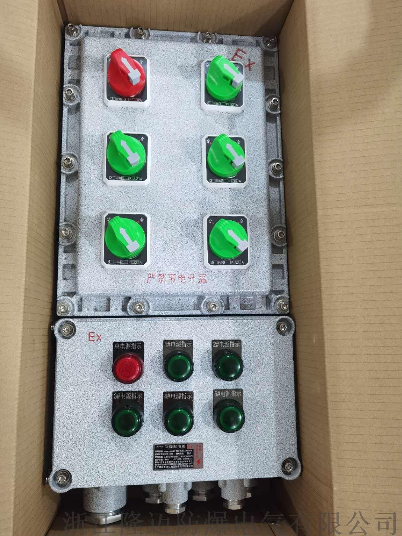 防爆动力配电箱ExdⅡCT4-铝合金(带防雨罩)154110745