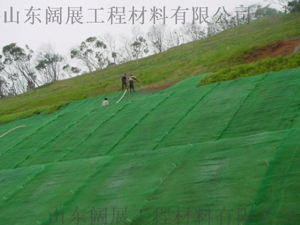 土工网垫 三维植草网 护坡绿化植草网66545452
