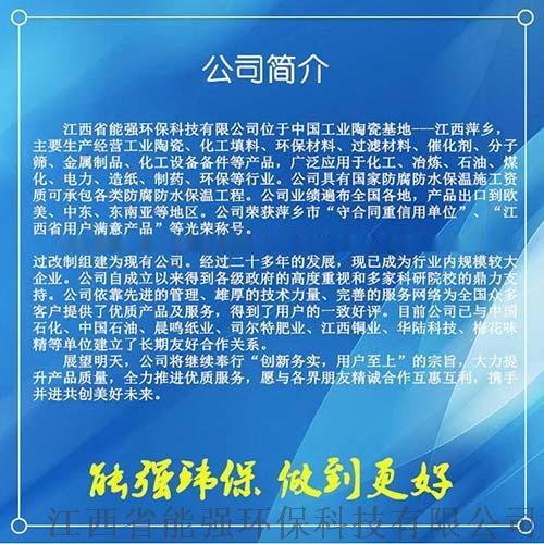 化工填料厂全国低价大量销售陶瓷鲍尔环规格齐全83071835