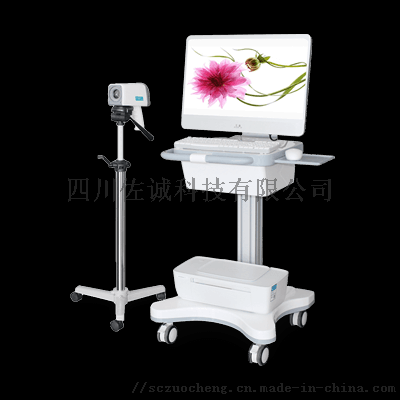 数码电子阴道镜 DKY1600型(标清).png