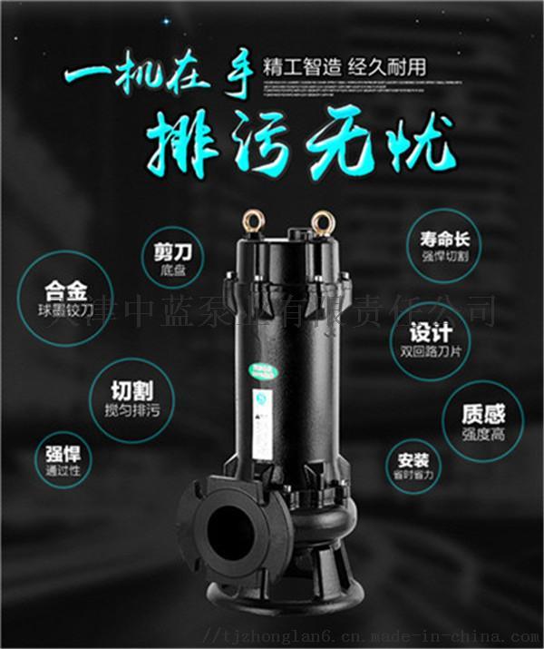 切割式污水泵3.jpg