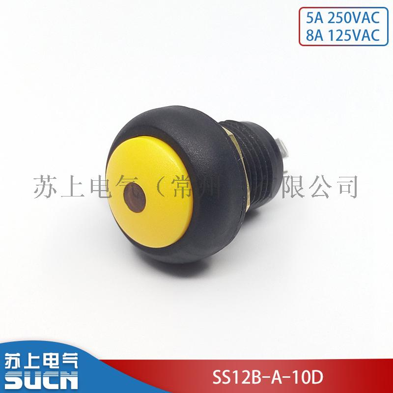 SS12B-A-10D.jpg