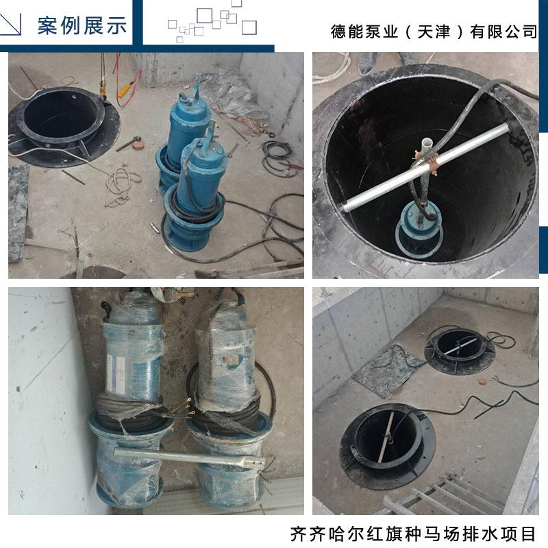 齐齐哈尔红旗种马场排水项目.jpg