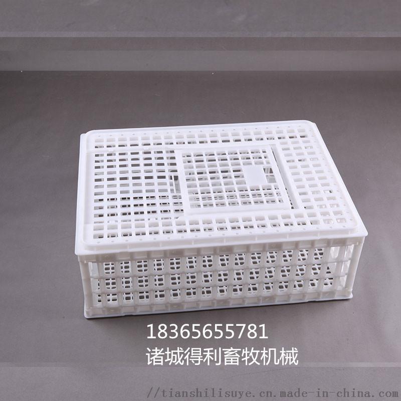 供应成鸡笼子 大鸡笼子 塑料鸡鸭大笼子898022365