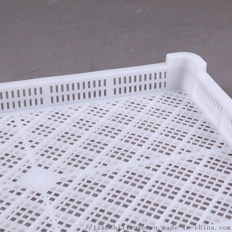 供应塑料单冻盘速冻盘烘干盘133548035