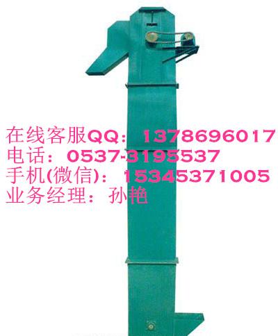 TD200型钢斗式提升机qc 垂直板链输送机定制23898942