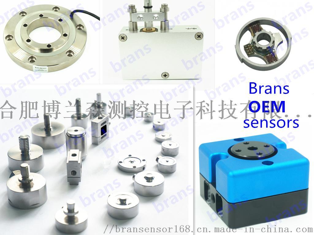 Brans OEM load cells.jpg